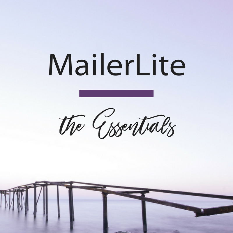 MailerLite The Essentials